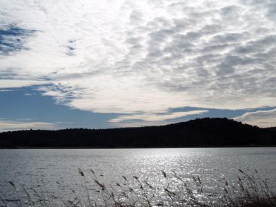 Imágenes sin palabras - Laguna del Rey