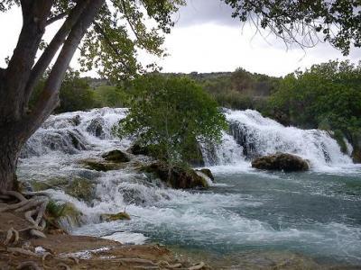 Foto primaveral. Lagunas de Ruidera